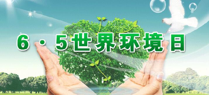 6.5世界环境日